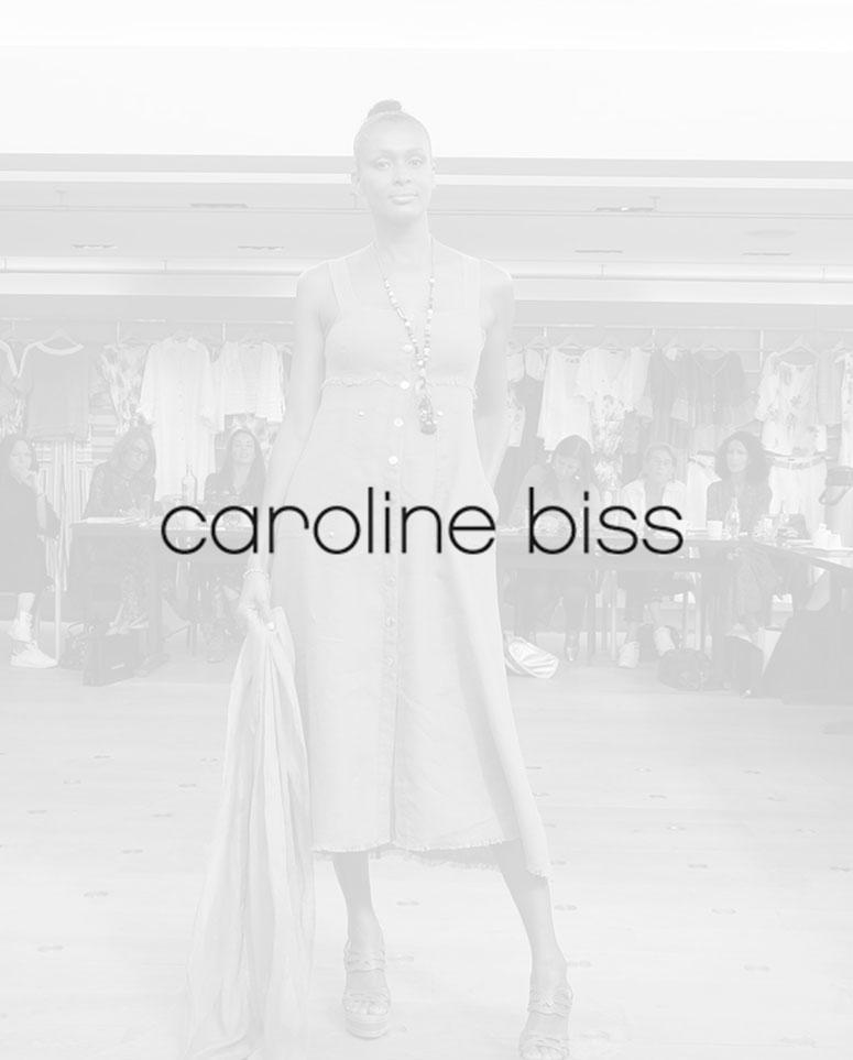 c_biss_2019_wiosna_logo